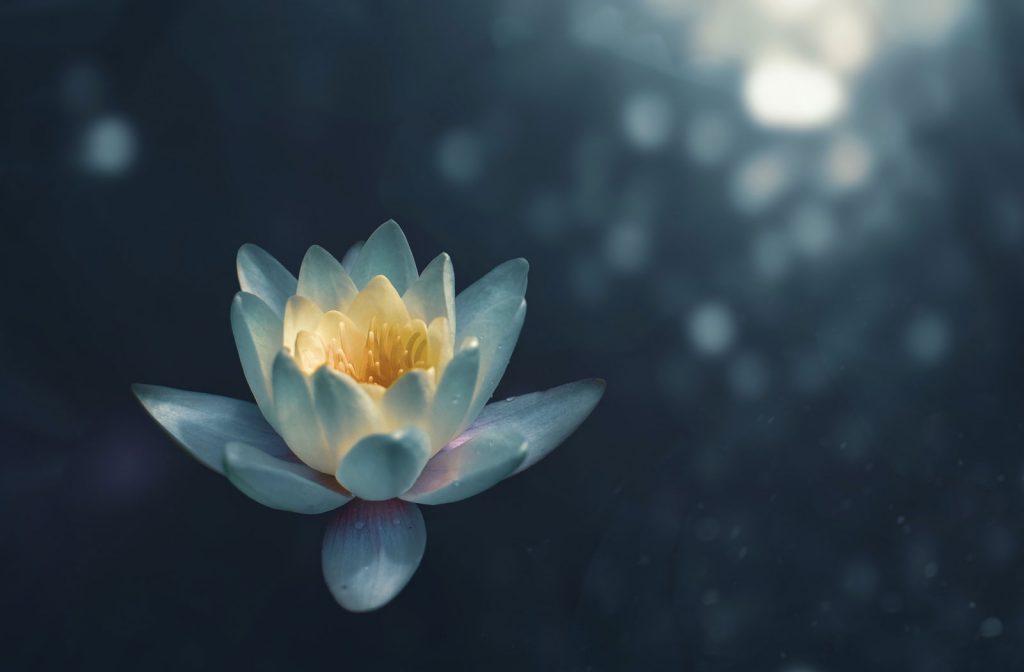La paix en soi